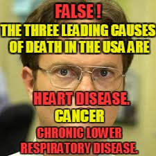 FALSE ! CHRONIC LOWER RESPIRATORY DISEASE. THE THREE LEADING CAUSES OF DEATH IN THE USA ARE HEART DISEASE. CANCER | made w/ Imgflip meme maker