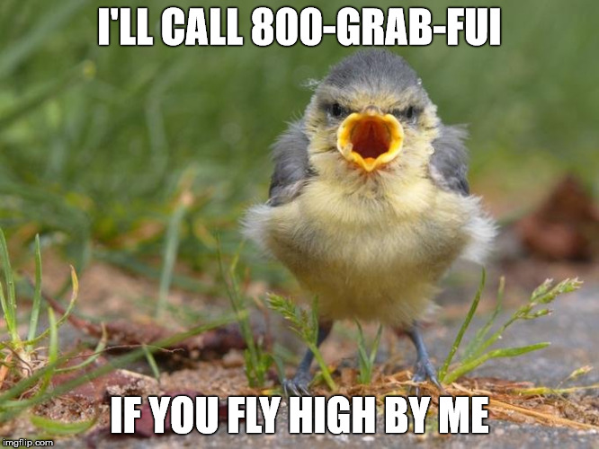 I'LL CALL 800-GRAB-FUI IF YOU FLY HIGH BY ME | made w/ Imgflip meme maker