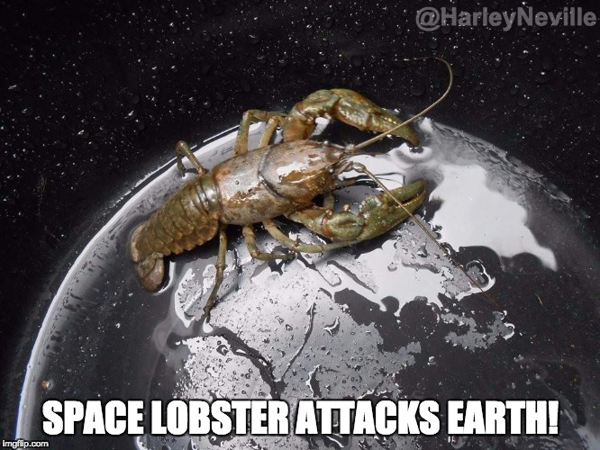 SPACE LOBSTER ATTACKS EARTH! | image tagged in giant lobster attacks earth | made w/ Imgflip meme maker