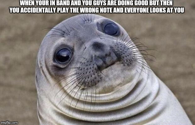 Awkward Moment Sealion Meme | WHEN YOUR IN BAND AND YOU GUYS ARE DOING GOOD BUT THEN YOU ACCIDENTALLY PLAY THE WRONG NOTE AND EVERYONE LOOKS AT YOU | image tagged in memes,awkward moment sealion | made w/ Imgflip meme maker