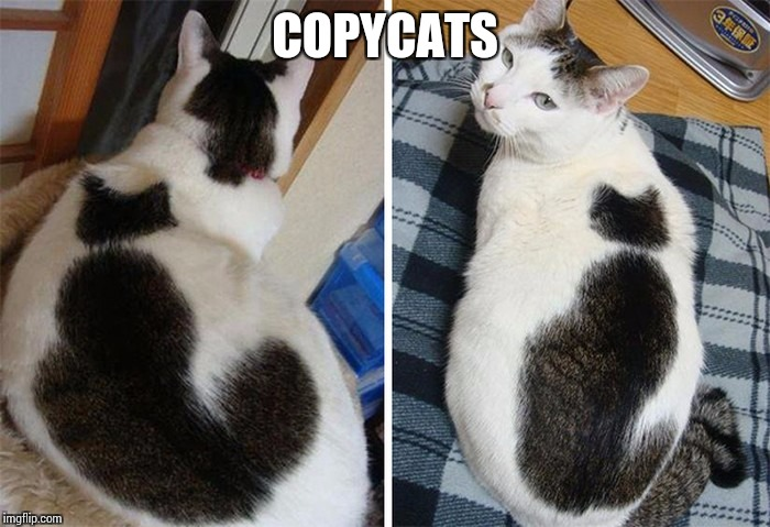 COPYCATS | made w/ Imgflip meme maker