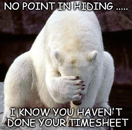 Timesheet Shame | NO POINT IN HIDING ..... I KNOW YOU HAVEN'T DONE YOUR TIMESHEET | image tagged in shame,timeheet meme,bear meme,hiding meme,timesheet reminder,meme | made w/ Imgflip meme maker