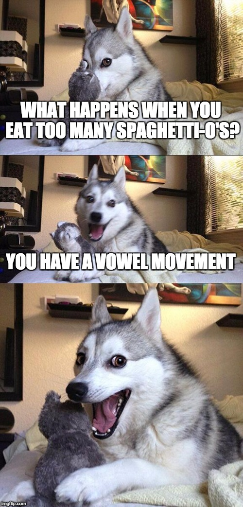 Punny Husky Redeaux | WHAT HAPPENS WHEN YOU EAT TOO MANY SPAGHETTI-O'S? YOU HAVE A VOWEL MOVEMENT | image tagged in memes,bad pun dog | made w/ Imgflip meme maker
