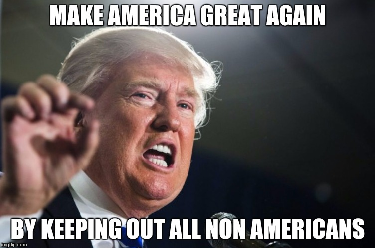 donald trump | MAKE AMERICA GREAT AGAIN BY KEEPING OUT ALL NON AMERICANS | image tagged in donald trump | made w/ Imgflip meme maker
