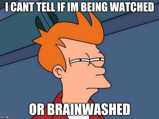 Futurama Fry Meme | I CANT TELL IF IM BEING WATCHED OR BRAINWASHED | image tagged in memes,futurama fry | made w/ Imgflip meme maker
