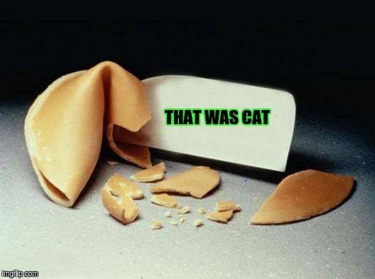 Fortune Cookie | THAT WAS CAT | image tagged in fortune cookie | made w/ Imgflip meme maker