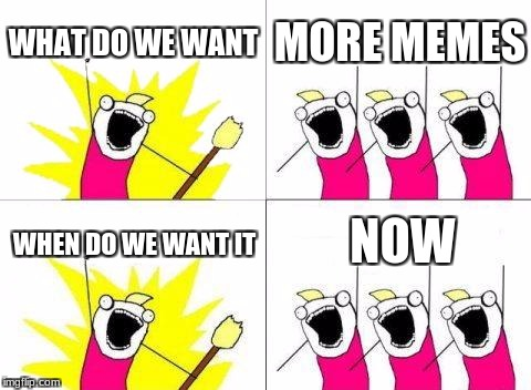 What Do We Want Meme | WHAT DO WE WANT MORE MEMES WHEN DO WE WANT IT NOW | image tagged in memes,what do we want | made w/ Imgflip meme maker