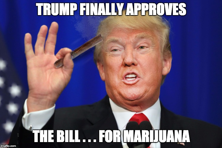 TRUMP FINALLY APPROVES THE BILL . . . FOR MARIJUANA | image tagged in cancer sticks,donald trump,marijuana,law | made w/ Imgflip meme maker