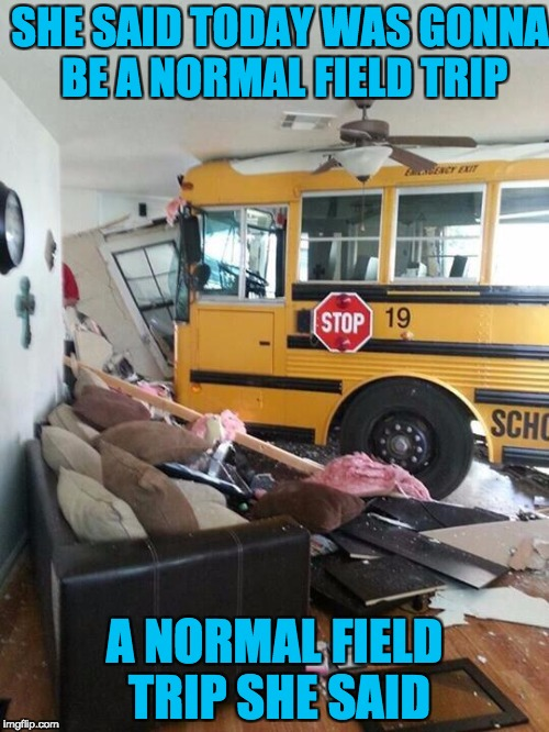 School | SHE SAID TODAY WAS GONNA BE A NORMAL FIELD TRIP A NORMAL FIELD TRIP SHE SAID | image tagged in school | made w/ Imgflip meme maker