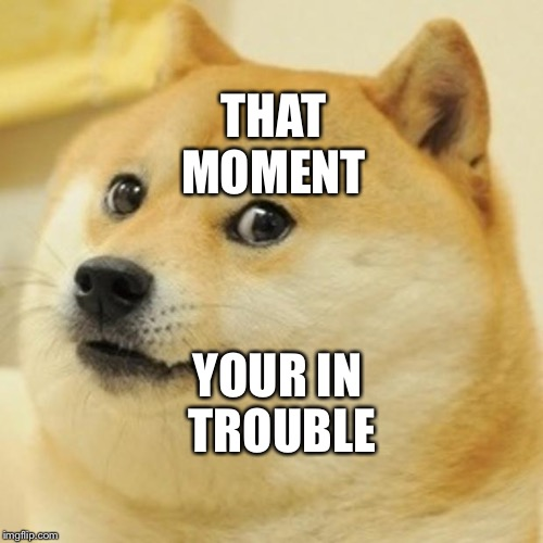 Doge Meme | THAT MOMENT YOUR IN TROUBLE | image tagged in memes,doge | made w/ Imgflip meme maker
