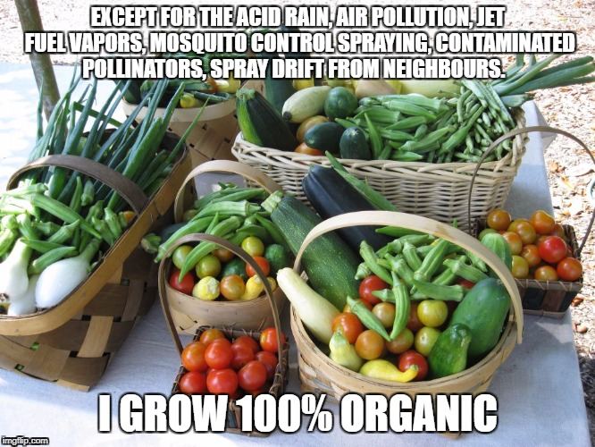 EXCEPT FOR THE ACID RAIN, AIR POLLUTION, JET FUEL VAPORS, MOSQUITO CONTROL SPRAYING, CONTAMINATED POLLINATORS, SPRAY DRIFT FROM NEIGHBOURS.  | image tagged in organic,vegetables | made w/ Imgflip meme maker