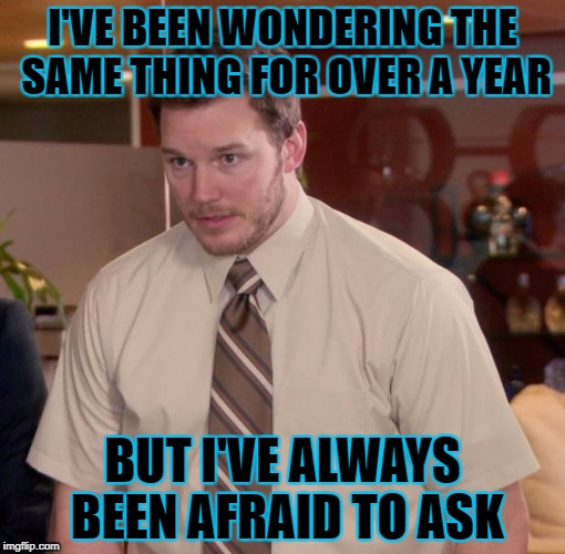 I'VE BEEN WONDERING THE SAME THING FOR OVER A YEAR BUT I'VE ALWAYS BEEN AFRAID TO ASK | made w/ Imgflip meme maker