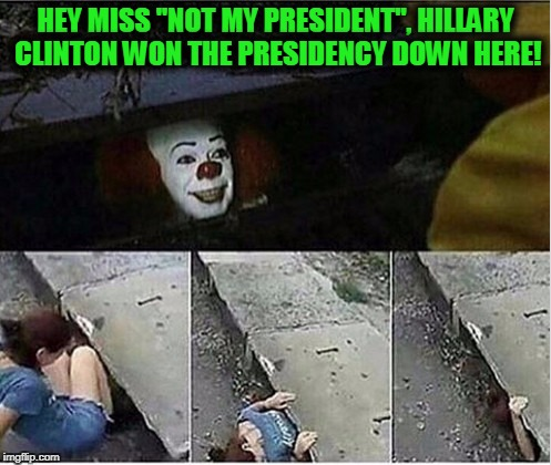 "Oh, if only this were possible for all of them! | HEY MISS ""NOT MY PRESIDENT"", HILLARY CLINTON WON THE PRESIDENCY DOWN HERE! 