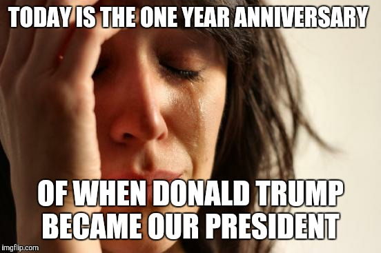 Eleven-Nine. Forever regret.  | TODAY IS THE ONE YEAR ANNIVERSARY OF WHEN DONALD TRUMP BECAME OUR PRESIDENT | image tagged in memes,first world problems,donald trump,president,eleven nine,president trump | made w/ Imgflip meme maker