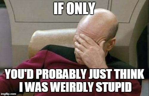 Captain Picard Facepalm Meme | IF ONLY YOU'D PROBABLY JUST THINK I WAS WEIRDLY STUPID | image tagged in memes,captain picard facepalm | made w/ Imgflip meme maker
