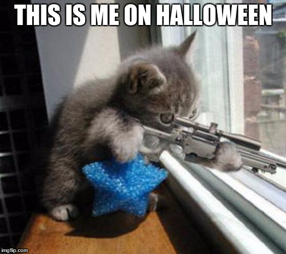 THIS IS ME ON HALLOWEEN | image tagged in hunting rats | made w/ Imgflip meme maker