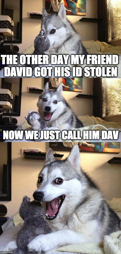 Oh you! | THE OTHER DAY MY FRIEND DAVID GOT HIS ID STOLEN NOW WE JUST CALL HIM DAV | image tagged in bad pun dog,david,id,bad pun,oh you,iwanttobebacon | made w/ Imgflip meme maker