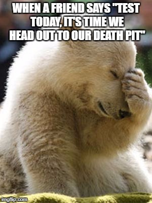 "Facepalm Bear |  WHEN A FRIEND SAYS ""TEST TODAY, IT'S TIME WE HEAD OUT TO OUR DEATH PIT"" 