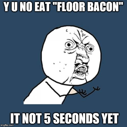 "Y U No Meme | Y U NO EAT ""FLOOR BACON"" IT NOT 5 SECONDS YET 