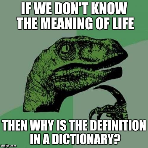 Philosoraptor Meme | IF WE DON'T KNOW THE MEANING OF LIFE THEN WHY IS THE DEFINITION IN A DICTIONARY? | image tagged in memes,philosoraptor | made w/ Imgflip meme maker