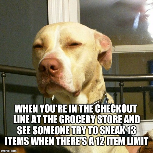 Suspicious Dog | WHEN YOU'RE IN THE CHECKOUT LINE AT THE GROCERY STORE AND SEE SOMEONE TRY TO SNEAK 13 ITEMS WHEN THERE'S A 12 ITEM LIMIT | image tagged in suspicious dog | made w/ Imgflip meme maker