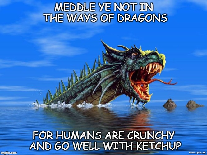 dragons | MEDDLE YE NOT IN THE WAYS OF DRAGONS FOR HUMANS ARE CRUNCHY AND GO WELL WITH KETCHUP | image tagged in memes | made w/ Imgflip meme maker