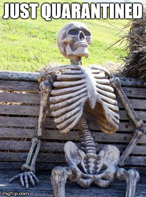 Waiting Skeleton Meme | JUST QUARANTINED | image tagged in memes,waiting skeleton | made w/ Imgflip meme maker