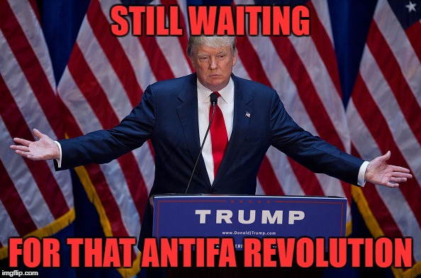 Trump Bruh |  STILL WAITING; FOR THAT ANTIFA REVOLUTION | image tagged in trump bruh | made w/ Imgflip meme maker