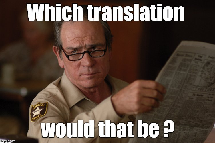 say what? | Which translation would that be ? | image tagged in say what | made w/ Imgflip meme maker