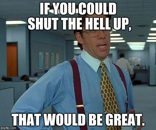 That Would Be Great Meme | IF YOU COULD SHUT THE HELL UP, THAT WOULD BE GREAT. | image tagged in memes,that would be great | made w/ Imgflip meme maker