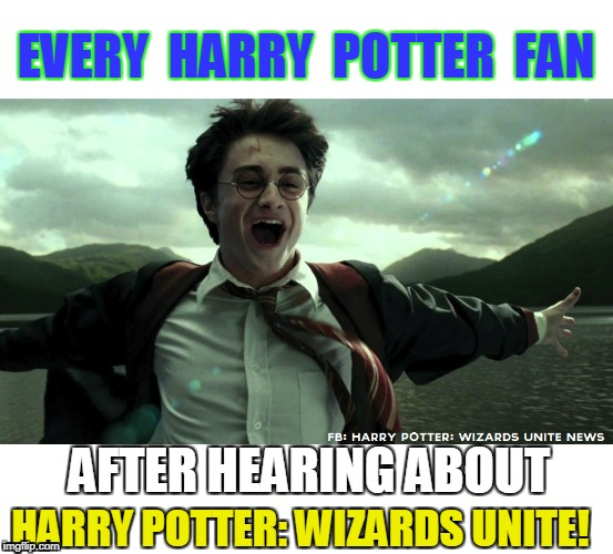 Harry Potter Wizards Unite mobile Game on Android and Ios | EVERY  HARRY  POTTER  FAN AFTER HEARING ABOUT HARRY POTTER: WIZARDS UNITE! | image tagged in harry potter meme,harry potter,pokemon go,android | made w/ Imgflip meme maker