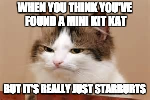 Disappointed Cat | WHEN YOU THINK YOU'VE FOUND A MINI KIT KAT BUT IT'S REALLY JUST STARBURTS | image tagged in disappointed cat | made w/ Imgflip meme maker