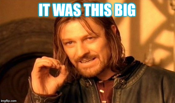 One Does Not Simply Meme | IT WAS THIS BIG | image tagged in memes,one does not simply | made w/ Imgflip meme maker