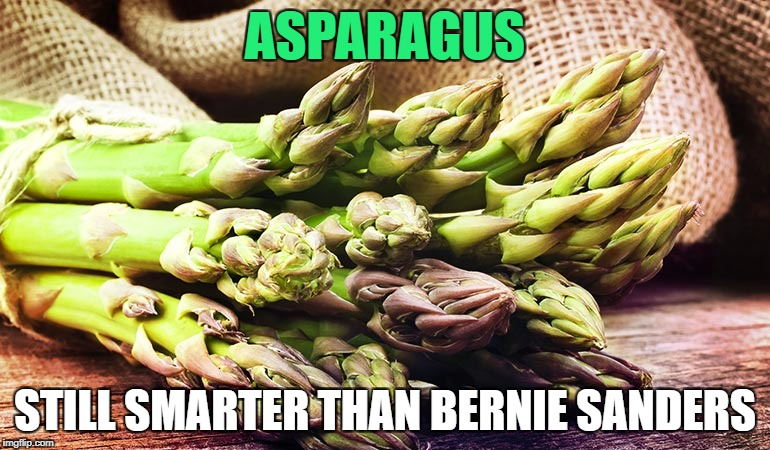 Or a Bernie Sanders voter, for that matter... | ASPARAGUS STILL SMARTER THAN BERNIE SANDERS | image tagged in bernie sanders,memes | made w/ Imgflip meme maker