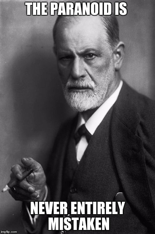 Sigmund Freud Meme | THE PARANOID IS NEVER ENTIRELY MISTAKEN | image tagged in memes,sigmund freud | made w/ Imgflip meme maker