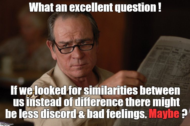 say what? | What an excellent question ! If we looked for similarities between us instead of difference there might be less discord & bad feelings. Mayb | image tagged in say what | made w/ Imgflip meme maker