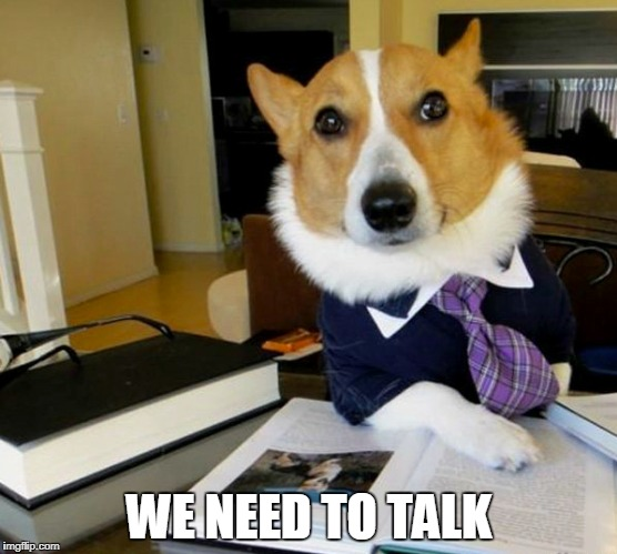 Lawyer dog has something to tell you.. | WE NEED TO TALK | image tagged in dog memes | made w/ Imgflip meme maker