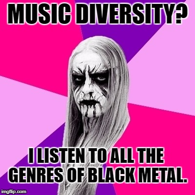 MUSIC DIVERSITY? I LISTEN TO ALL THE GENRES OF BLACK METAL. | image tagged in black metal fashionista | made w/ Imgflip meme maker