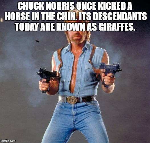 Chuck Norris Guns Meme | CHUCK NORRIS ONCE KICKED A HORSE IN THE CHIN. ITS DESCENDANTS TODAY ARE KNOWN AS GIRAFFES. | image tagged in memes,chuck norris guns,chuck norris | made w/ Imgflip meme maker