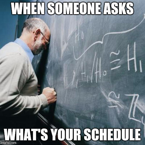 WHEN SOMEONE ASKS WHAT'S YOUR SCHEDULE | made w/ Imgflip meme maker