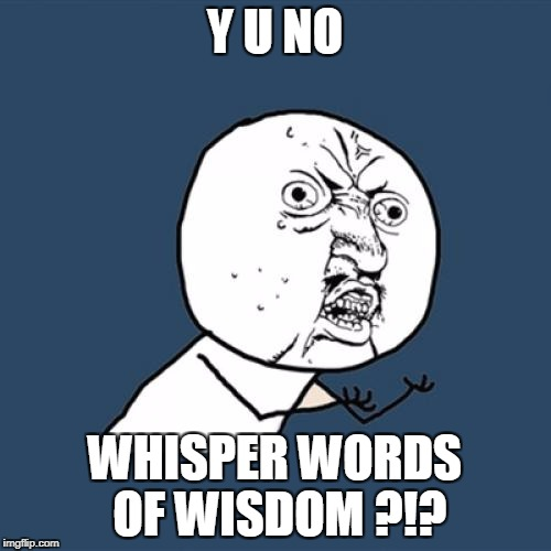Y U No Meme | Y U NO WHISPER WORDS OF WISDOM ?!? | image tagged in memes,y u no | made w/ Imgflip meme maker