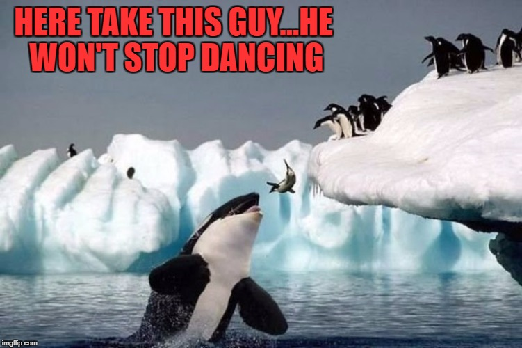 HERE TAKE THIS GUY...HE WON'T STOP DANCING | made w/ Imgflip meme maker