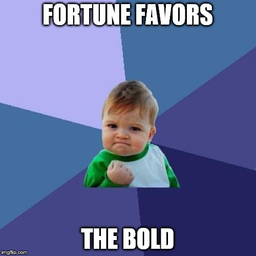 Success Kid Meme | FORTUNE FAVORS THE BOLD | image tagged in memes,success kid | made w/ Imgflip meme maker