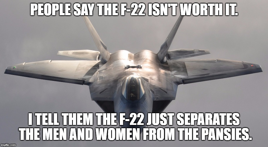 PEOPLE SAY THE F-22 ISN'T WORTH IT. I TELL THEM THE F-22 JUST SEPARATES THE MEN AND WOMEN FROM THE PANSIES. | image tagged in f-22 raptor | made w/ Imgflip meme maker