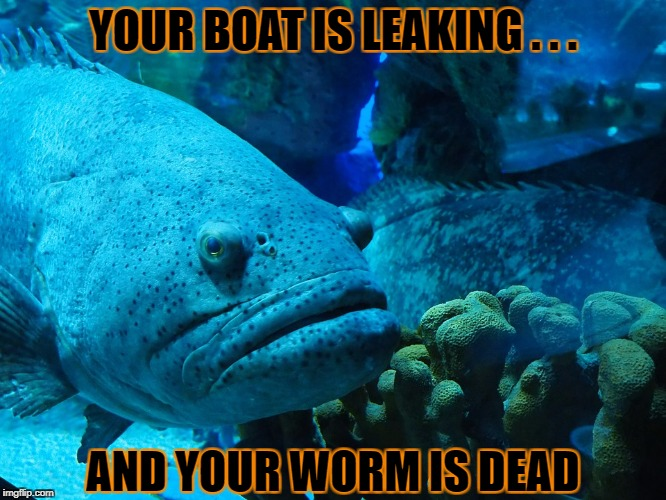 YOUR BOAT IS LEAKING . . . AND YOUR WORM IS DEAD | made w/ Imgflip meme maker