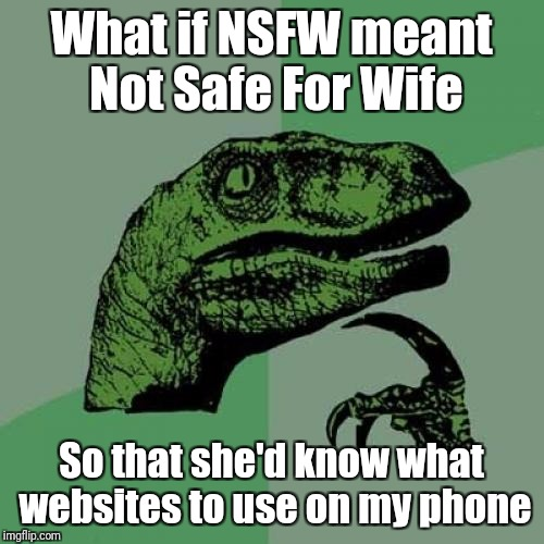 Philosoraptor Meme | What if NSFW meant Not Safe For Wife So that she'd know what websites to use on my phone | image tagged in memes,philosoraptor | made w/ Imgflip meme maker