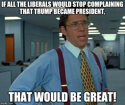 That Would Be Great Meme | IF ALL THE LIBERALS WOULD STOP COMPLAINING THAT TRUMP BECAME PRESIDENT, THAT WOULD BE GREAT! | image tagged in memes,that would be great | made w/ Imgflip meme maker