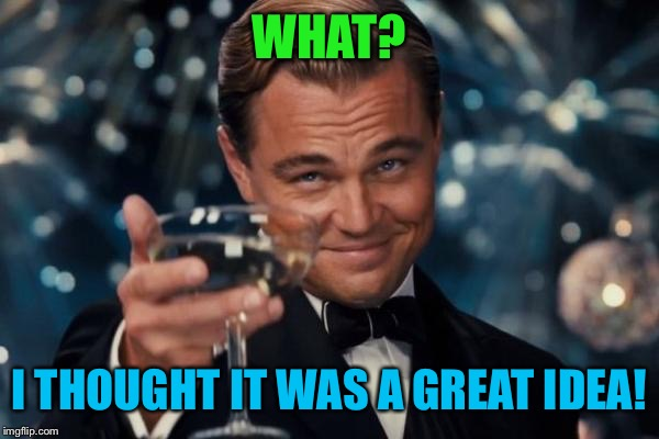 Leonardo Dicaprio Cheers Meme | WHAT? I THOUGHT IT WAS A GREAT IDEA! | image tagged in memes,leonardo dicaprio cheers | made w/ Imgflip meme maker