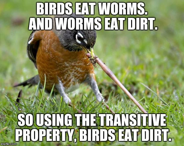 Birds Eat Dirt | BIRDS EAT WORMS. AND WORMS EAT DIRT. SO USING THE TRANSITIVE PROPERTY, BIRDS EAT DIRT. | image tagged in birds,dirt,worms,funny | made w/ Imgflip meme maker