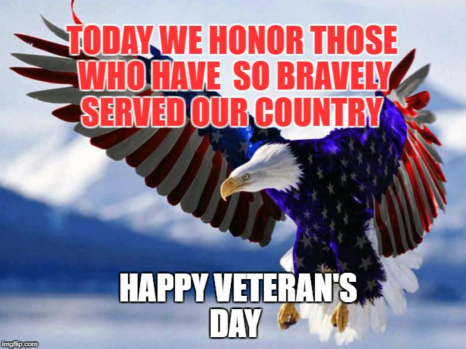 TODAY WE HONOR THOSE WHO HAVE  SO BRAVELY SERVED OUR COUNTRY HAPPY VETERAN'S DAY | image tagged in veterans day | made w/ Imgflip meme maker